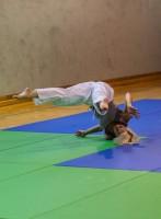 akebono-training-41